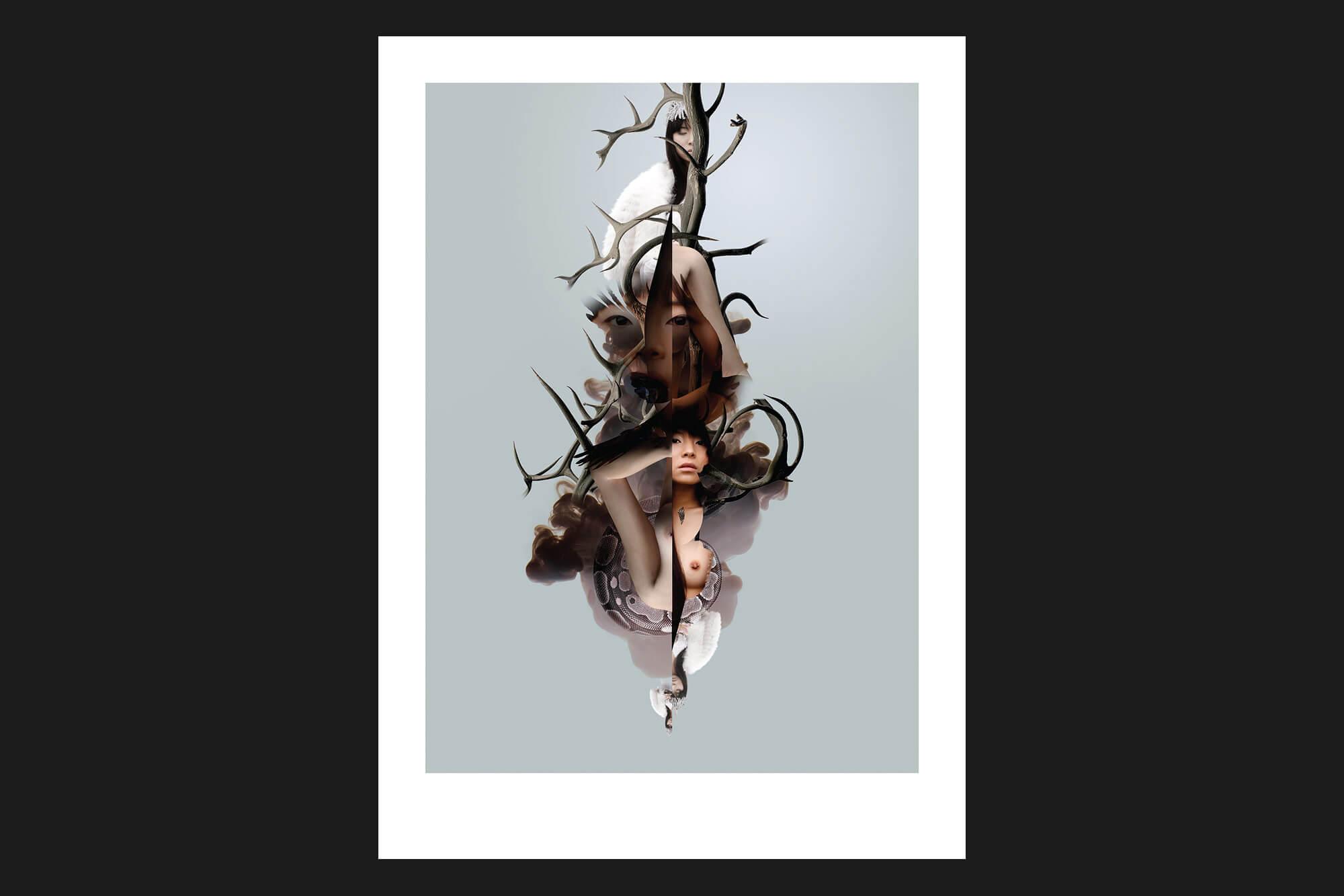gareth-paul-jones-studio-design-neringa-rekasiute-photography-7788-art-identity-series-cs-07